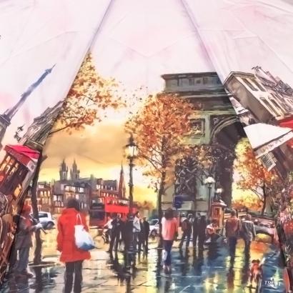 Женский зонт TRUST 31477-4 ( Фото )